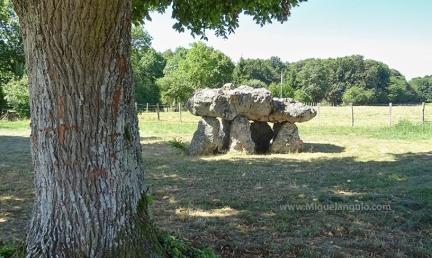 Dolmen de Maupertuis (-5000) cerca de Chahaignes